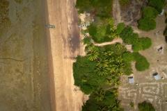 ULM-Guyane-Orthophotographie